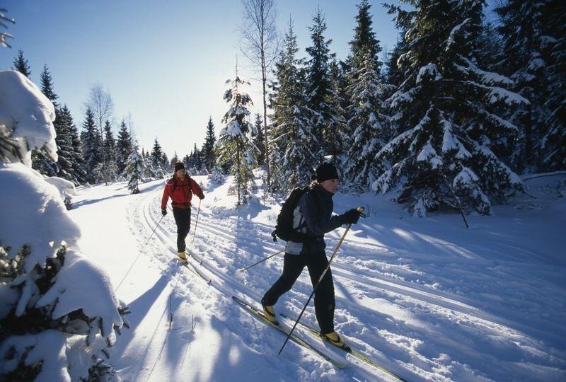 Winter aktivurlaub mit kindern