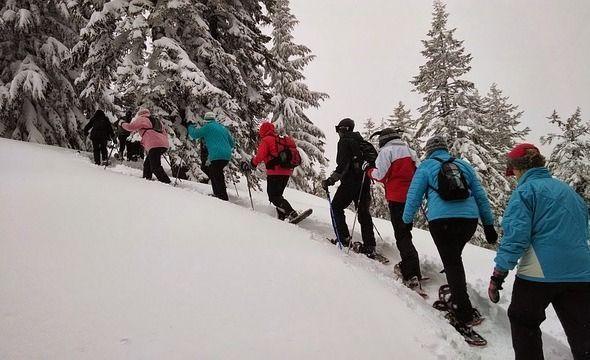 wintertourismus vorteile